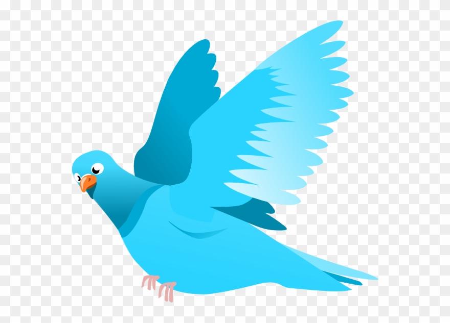 Birds vector. Blue bird clip art