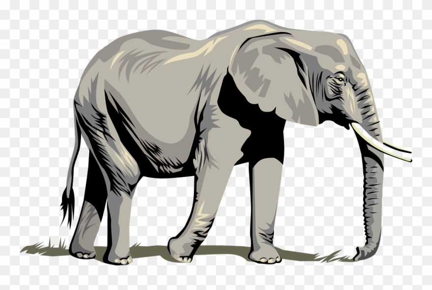 Stunning Idea Elephant Clipart Clip Art Outline Free Clipart Elephant Png Transparent Png 26987 Pinclipart Elephant illustration, african bush elephant asian elephant african forest elephant, elephant. stunning idea elephant clipart clip art