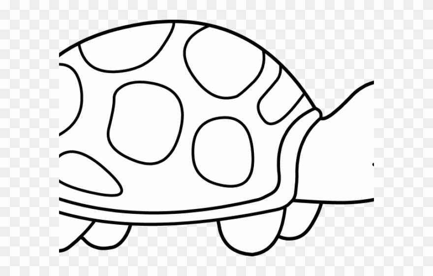 Turtle Clip Art Black and White