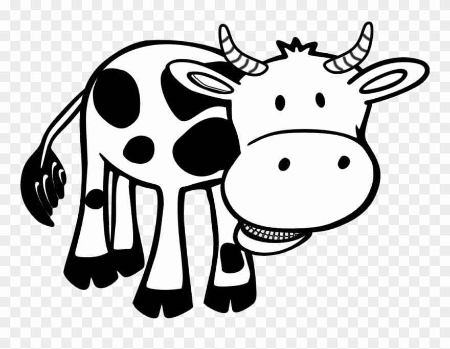 Cow Black White Line Hunky Dory Svg Colouringbook