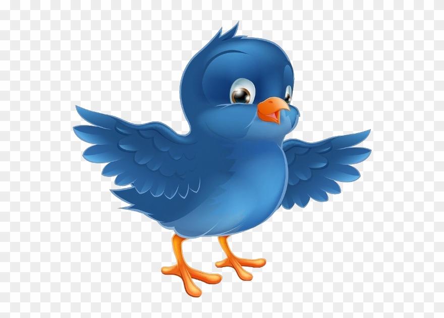 Birds cartoon. Purple bird clipart and