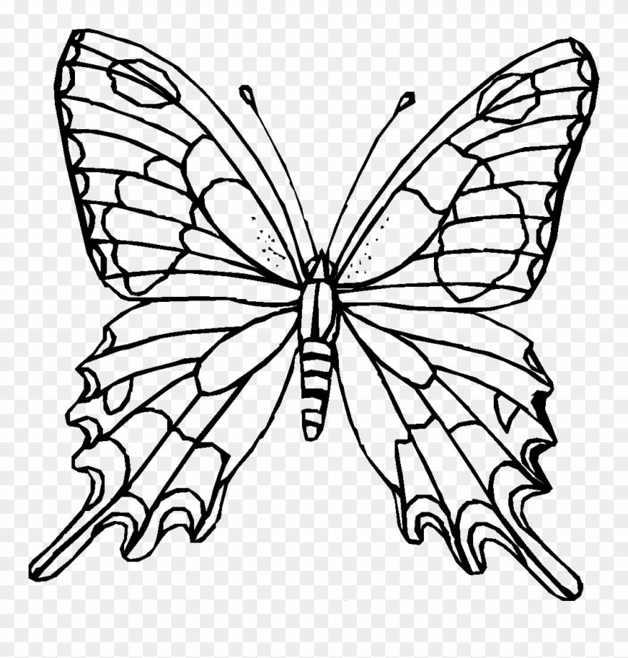 Ausmalbilder Schmetterling Zum Ausdrucken Mandala Coloring Pages
