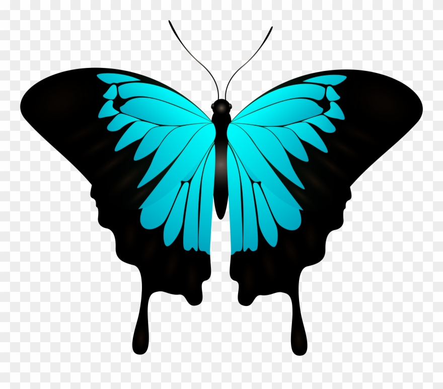 Blue Butterfly Decorative Transparent Image Clipart 2066297