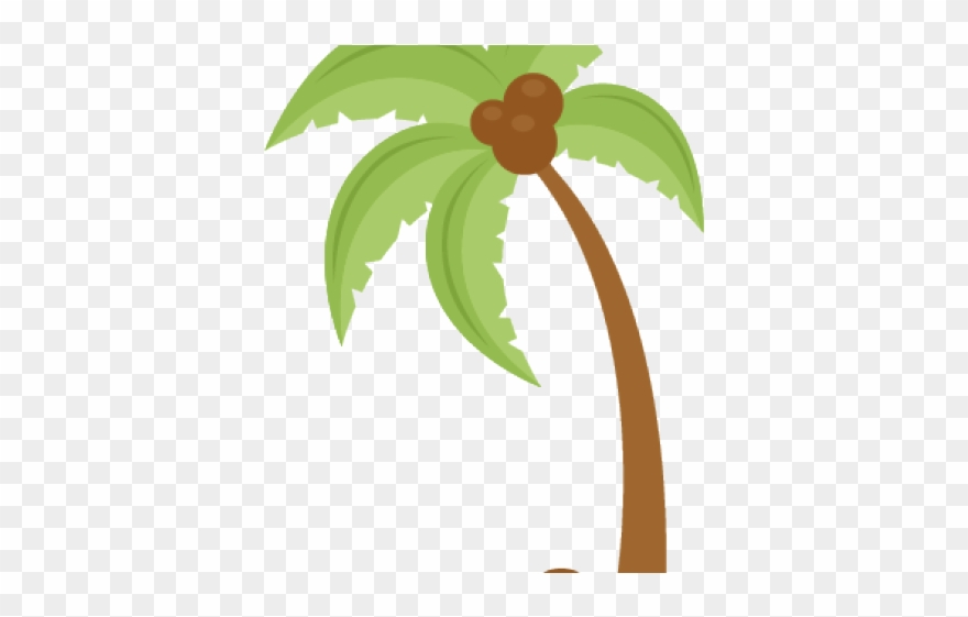 Cute Coconut Tree Clipart Png Download 2085902 Pinclipart