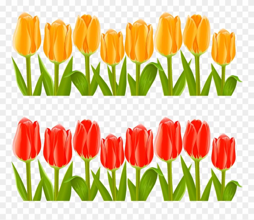 indira gandhi memorial tulip garden flower clip art tulips flower garden clip art png download 214749 pinclipart indira gandhi memorial tulip garden