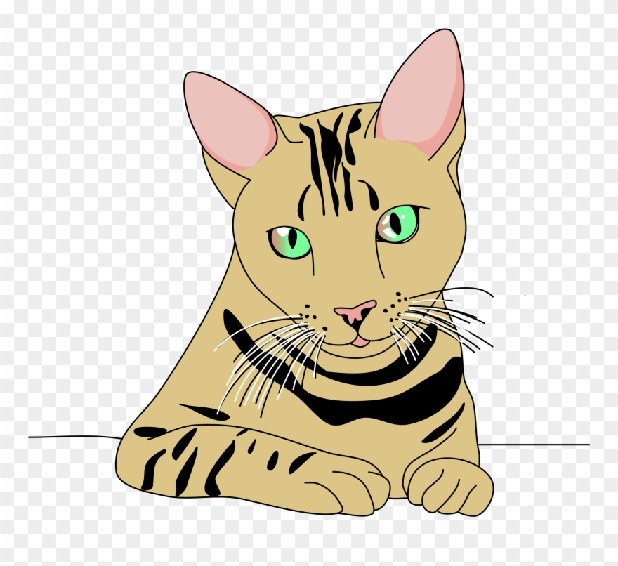 clipart cat pose top png top cat clipart kucing lucu png transparent png 2133551 pinclipart clipart cat pose top png top cat