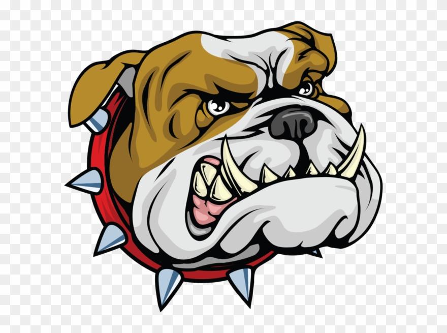 Bulldog Cartoonbulldog Mascotcartoon Head Bulldog Clipart
