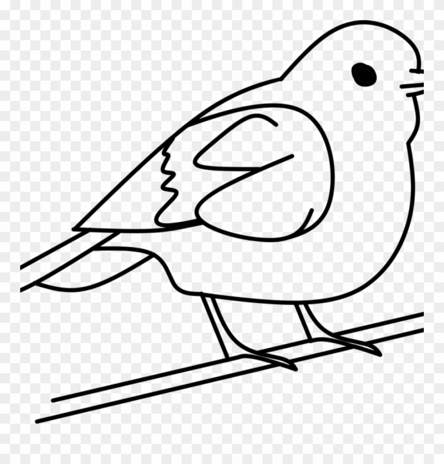 Three Birds Source Clip Art Black And White Bird Png Download 2157906 Pinclipart