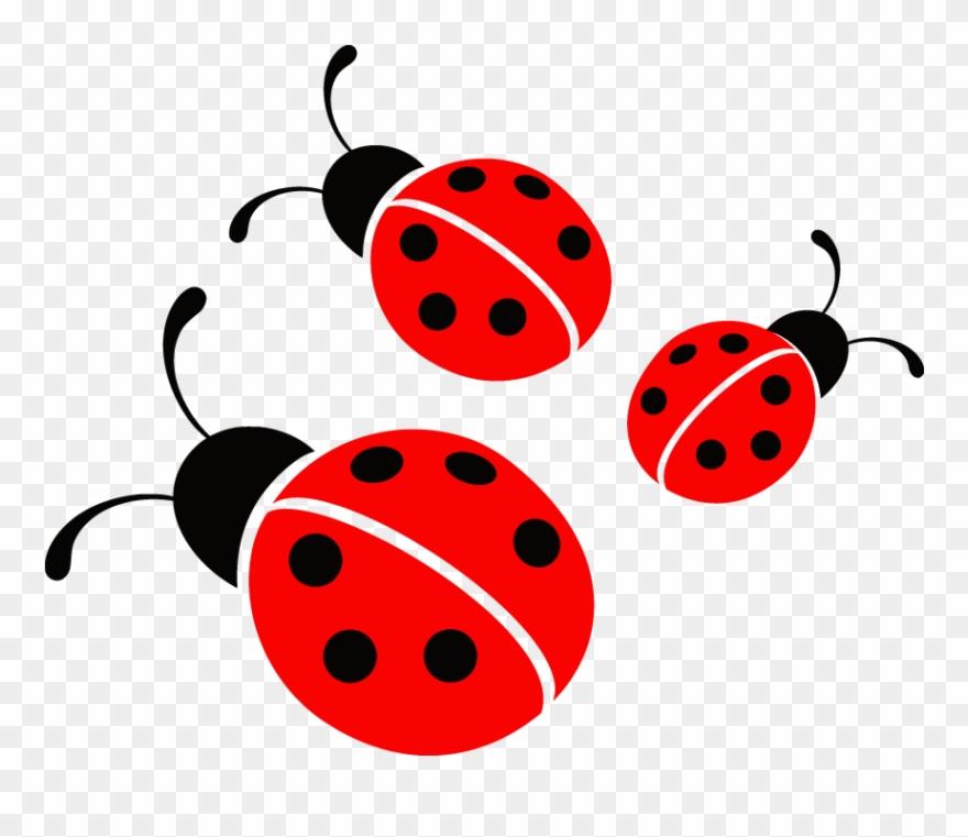 Ladybug Vector Image - Ladybug Png Clipart