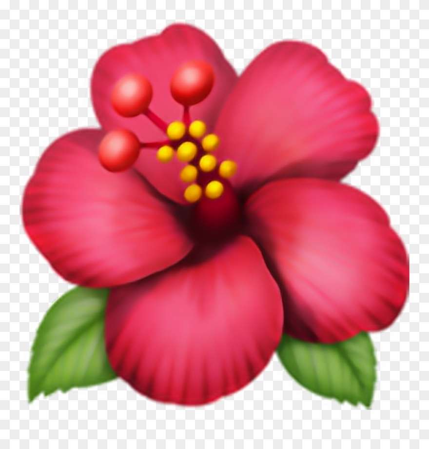 Flower Emoji Transparent Same Day Flower Delivery