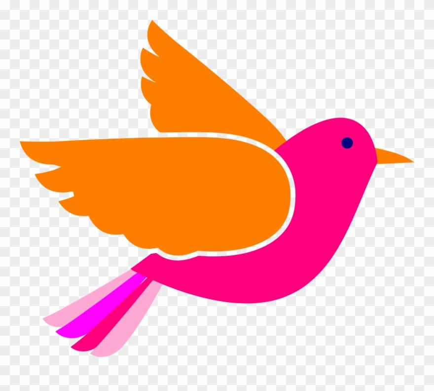 Birds pink. Bird face clip art