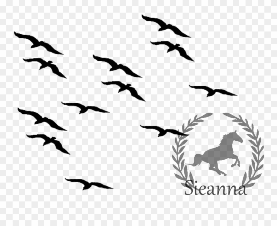Suggest flying bird clip art black and white