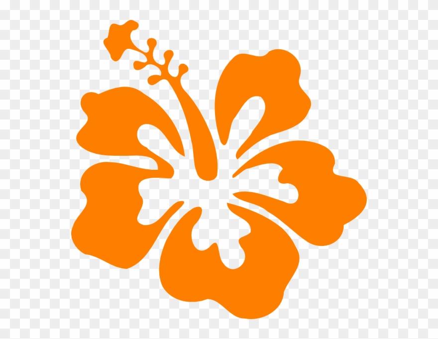 Showing Post Media For Orange Hibiscus Cartoon Orange Hibiscus