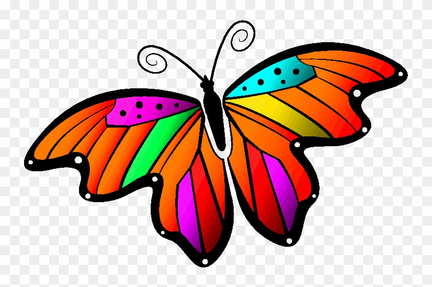 Animated butterfly. Monarch clipart gif animation