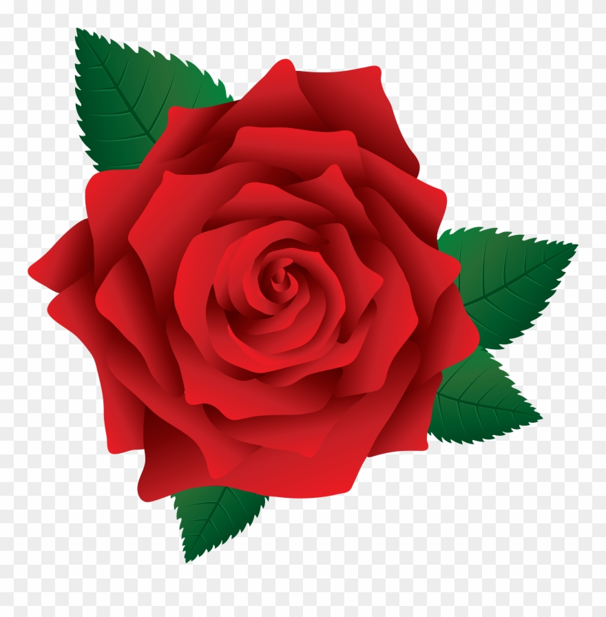 Red Rose Clipart Rose Png Clip Art Transparent Png 262958 Pinclipart