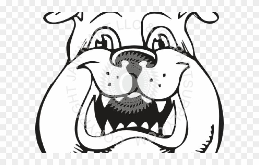 Bulldog Clipart Face Png Download 2625619 Pinclipart