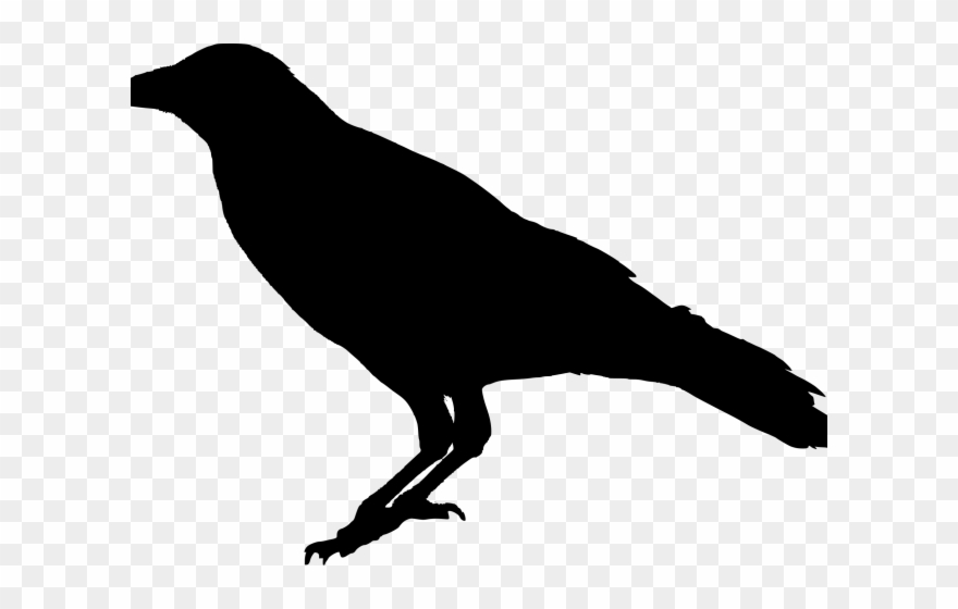 Crow Clipart Poe - Png Download (#2665231) - PinClipart