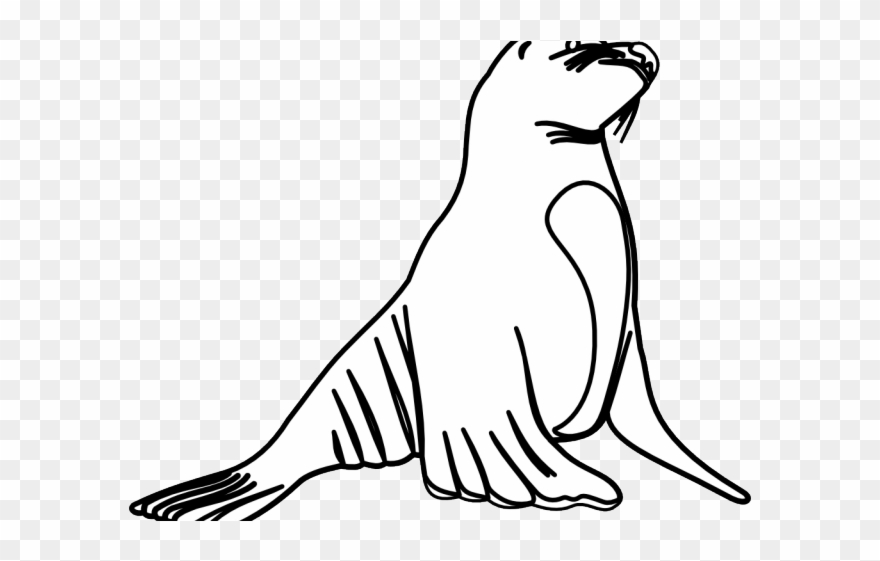 How to Draw Leopard Seals - Get Coloring Pages | 561x880