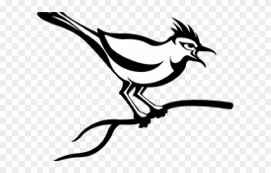 Cuckoo Clipart Indian Bird