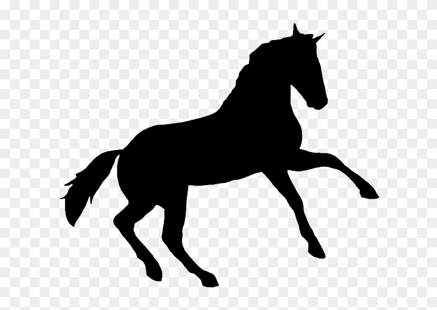 image relating to Printable Horse Pictures known as Printable Horse Silhouette Clipart (#2772176) - PinClipart
