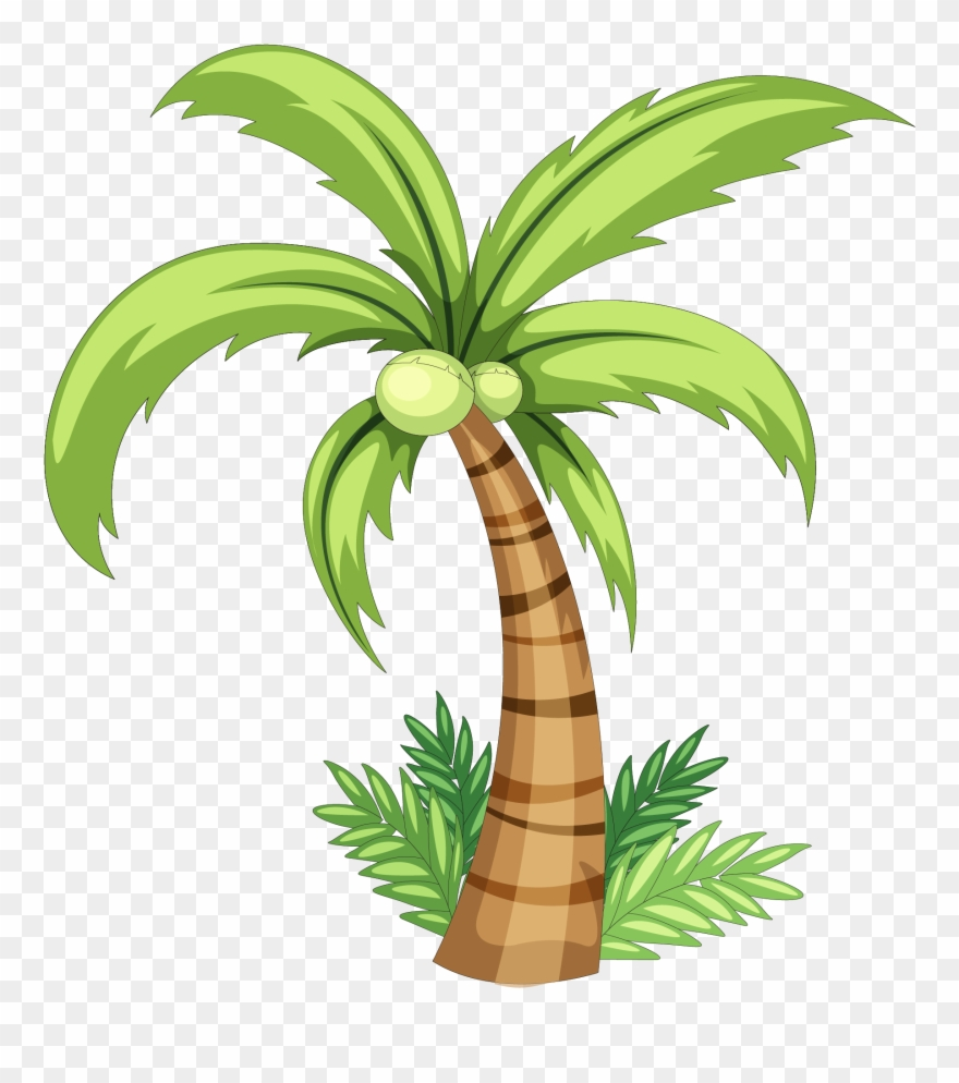 Trees coconut. Drawing clip art simple