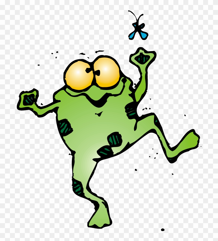February melonheadz. Frog clipart png download