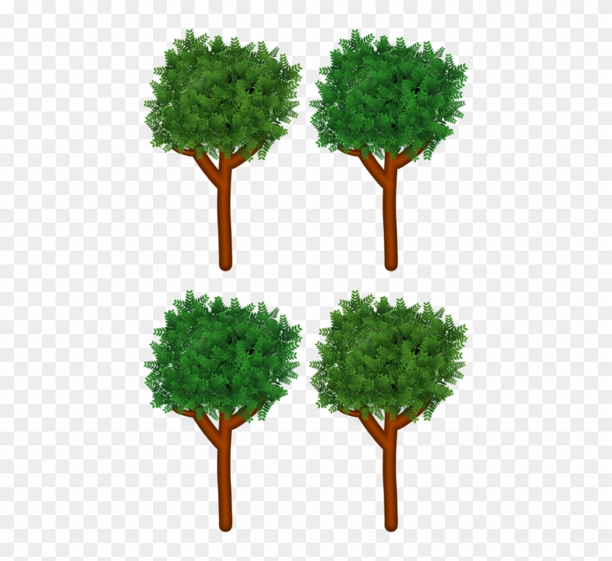 Tree Branch Shrub Forest Wood Branch Clipart 294727 Pinclipart