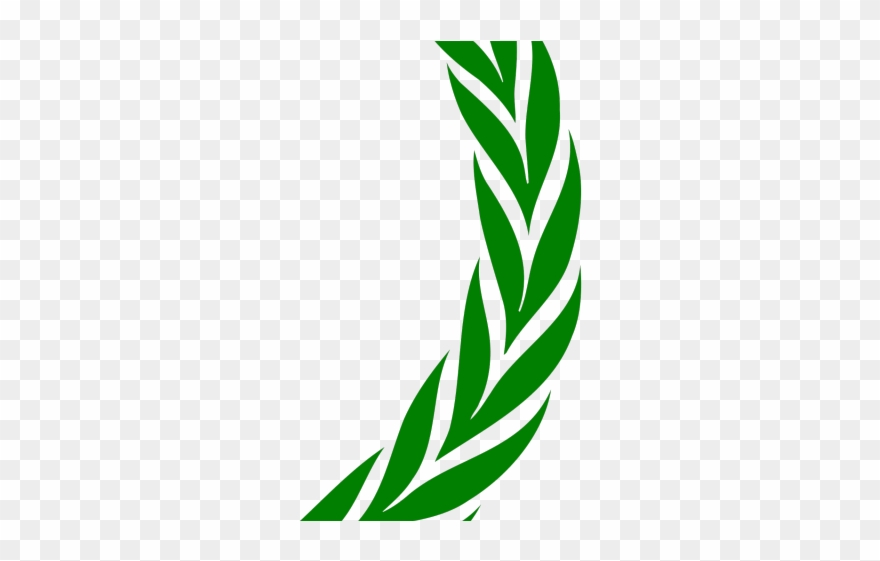 Green Leaves Clipart Laurel Png Download 2931908 Pinclipart