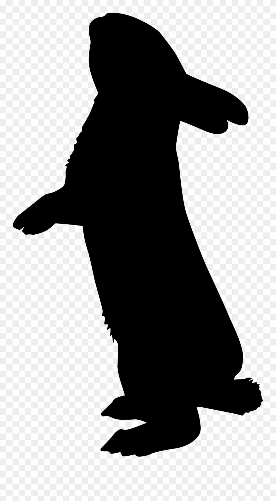 Recherche Google Rabbit Silhouette, Silhouette Art, - Rabbit Silhouette Png Clipart