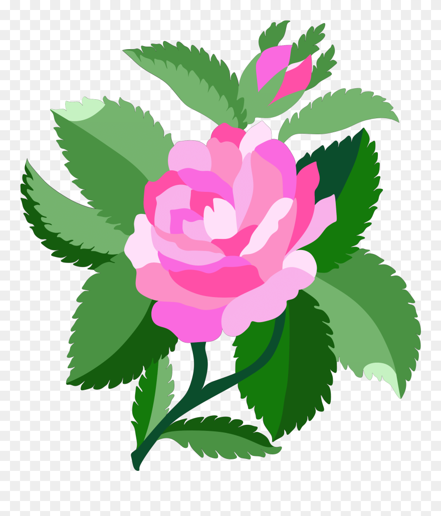 Animated flower. Free rose clipart animations
