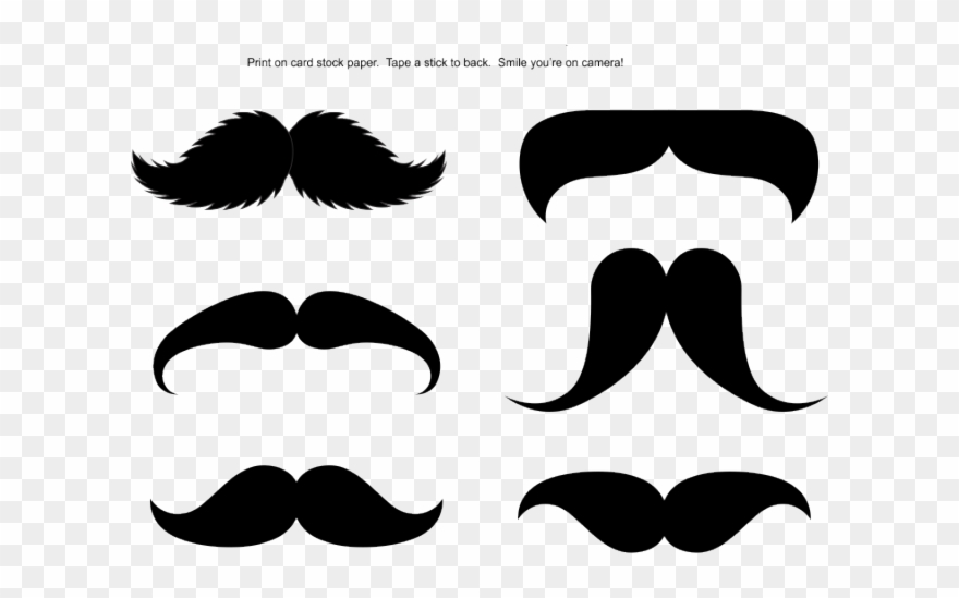 picture about Printable Mustache referred to as Mustache Clipart Adhere Printable - Moustache Prop For Picture