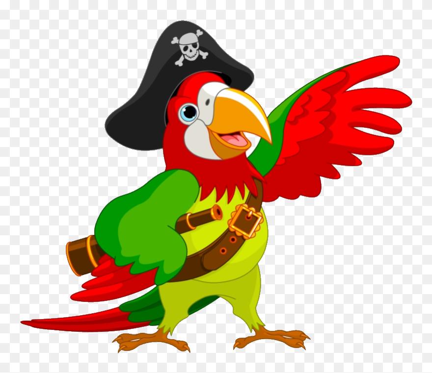 Pirate Parrot Piracy Jack Sparrow Clip Art Pirate Parrot