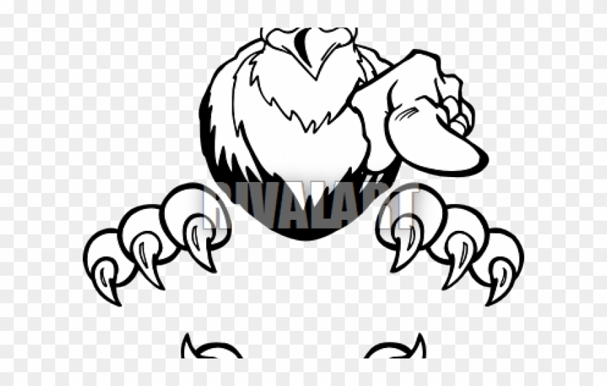 Hawk Clipart Talon