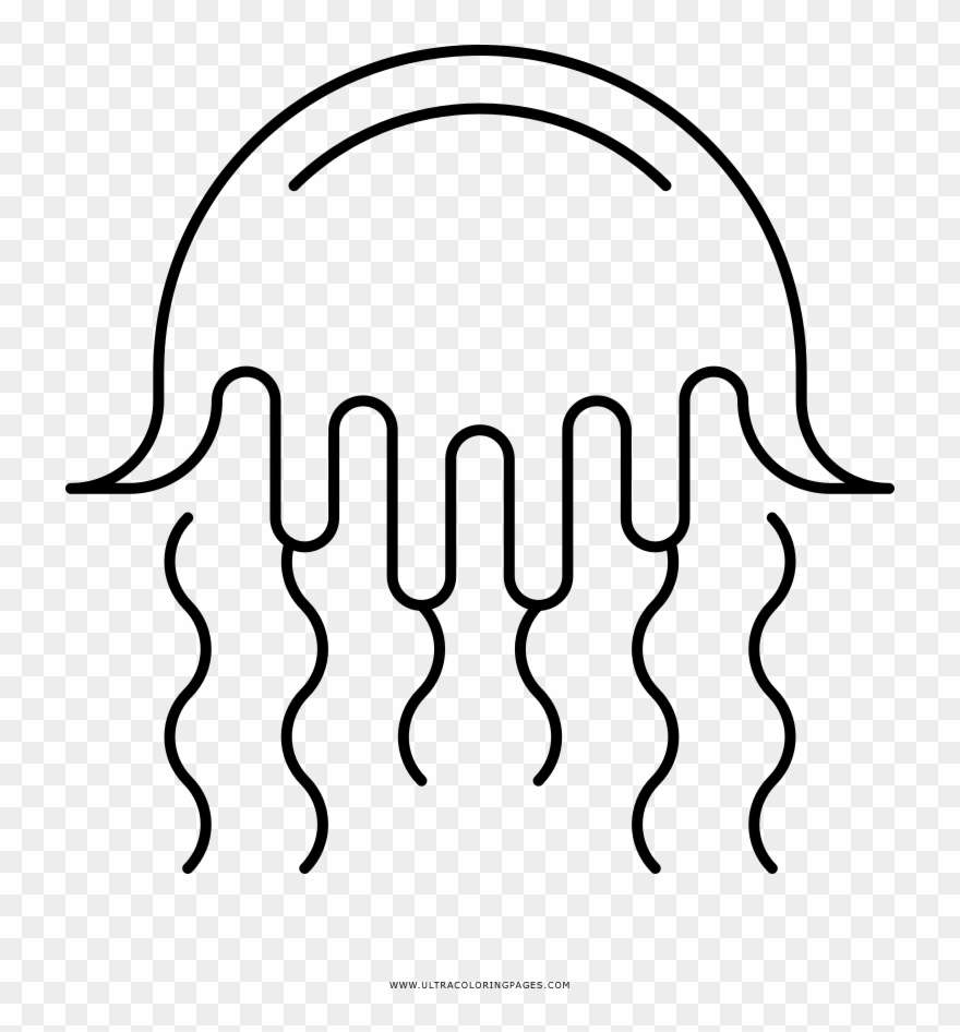 Jellyfish Coloring Page Clipart 3169025 Pinclipart