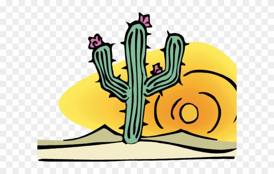 Cactus desert. Clipart png download