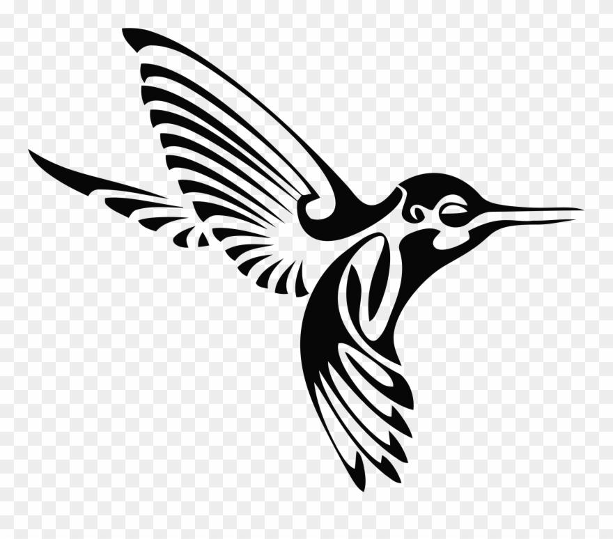 Kiss Hummingbird Drawing Clip Art Birds 5ab38a273ca6e7