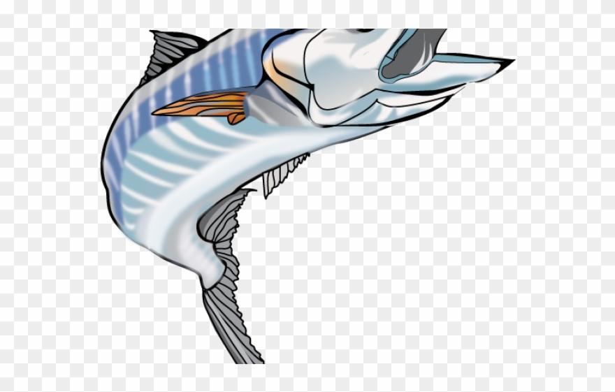 Sailfish Clipart Wahoo - Wahoo - Png Download (#3295597) - PinClipart