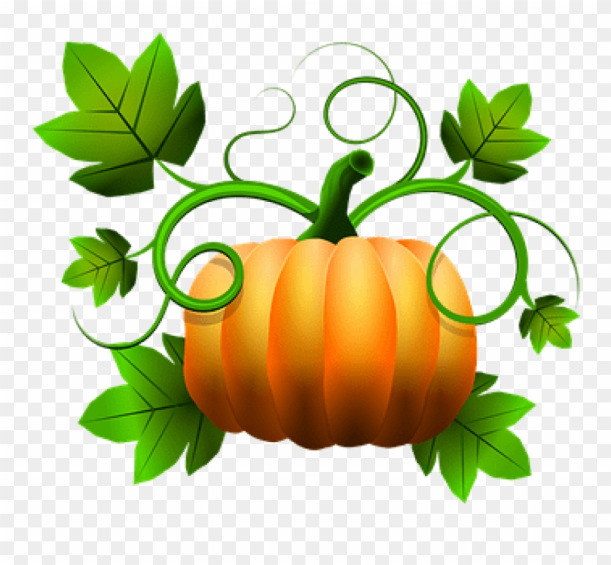 November pumpkin. Free png download zazzle