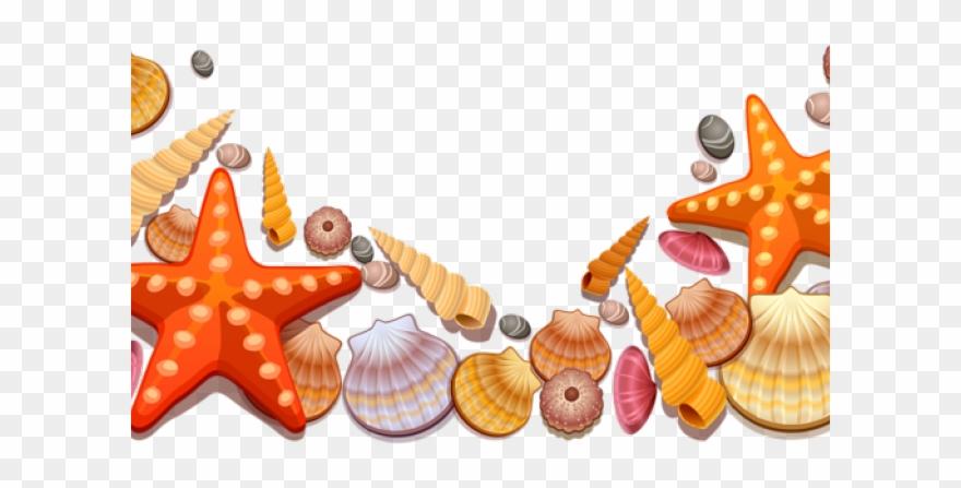Beach seashell. Clipart transparent shells png