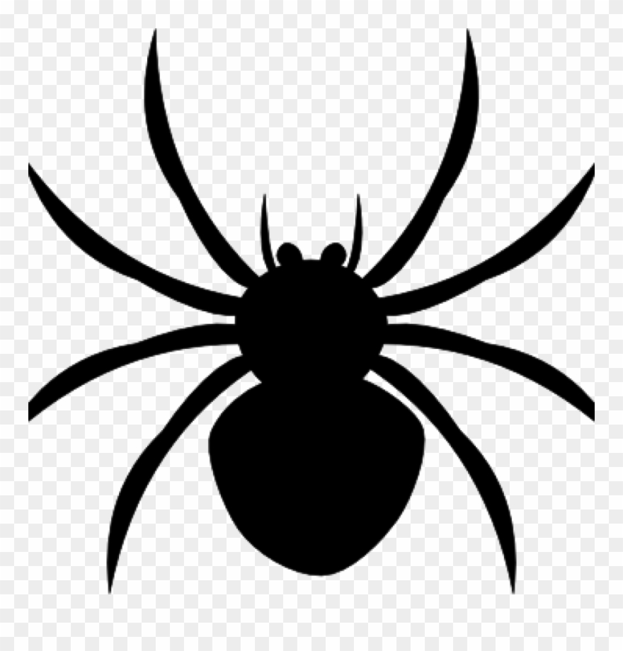 Halloween Spider Clipart.Spider Clipart Black And White Arachnophobia Overcoming Spider Halloween Clip Art Png Download 347558 Pinclipart