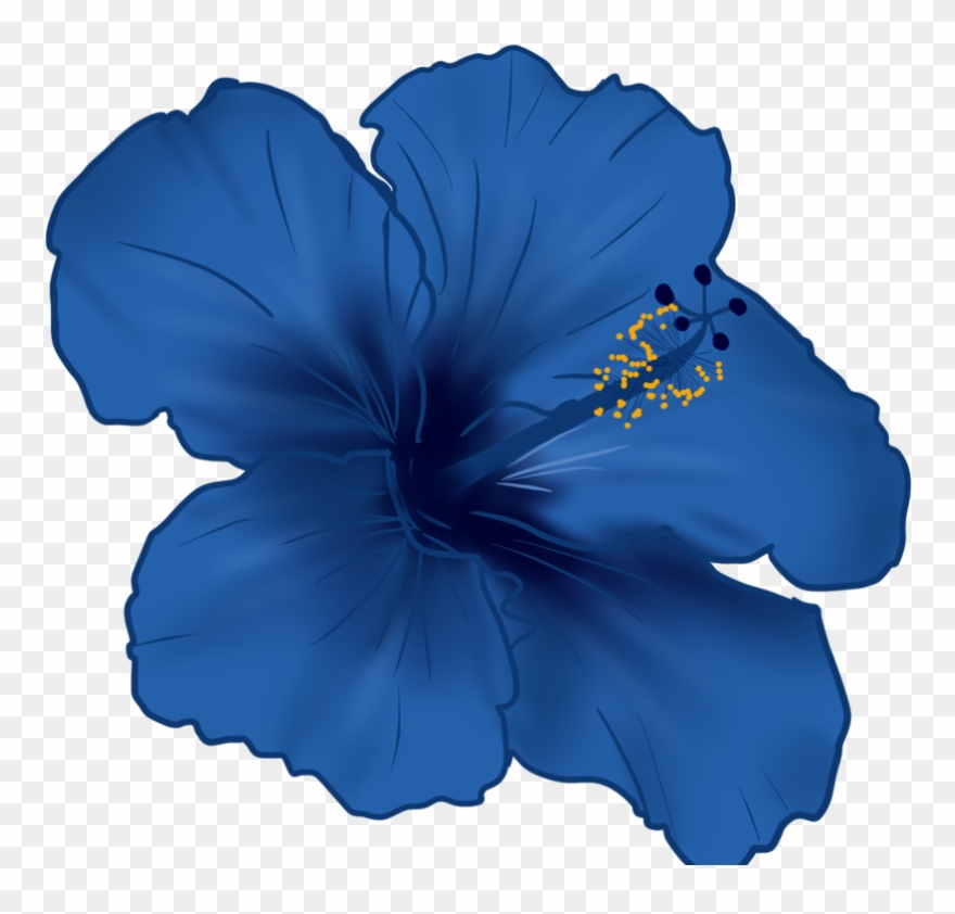 Flower By Shadow Ghost Hibiscus Flower Blue Clipart 3407582