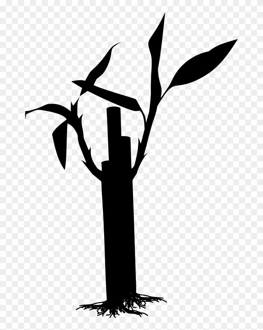 download png pohon bambu vector png clipart 3424419 pinclipart download png pohon bambu vector png