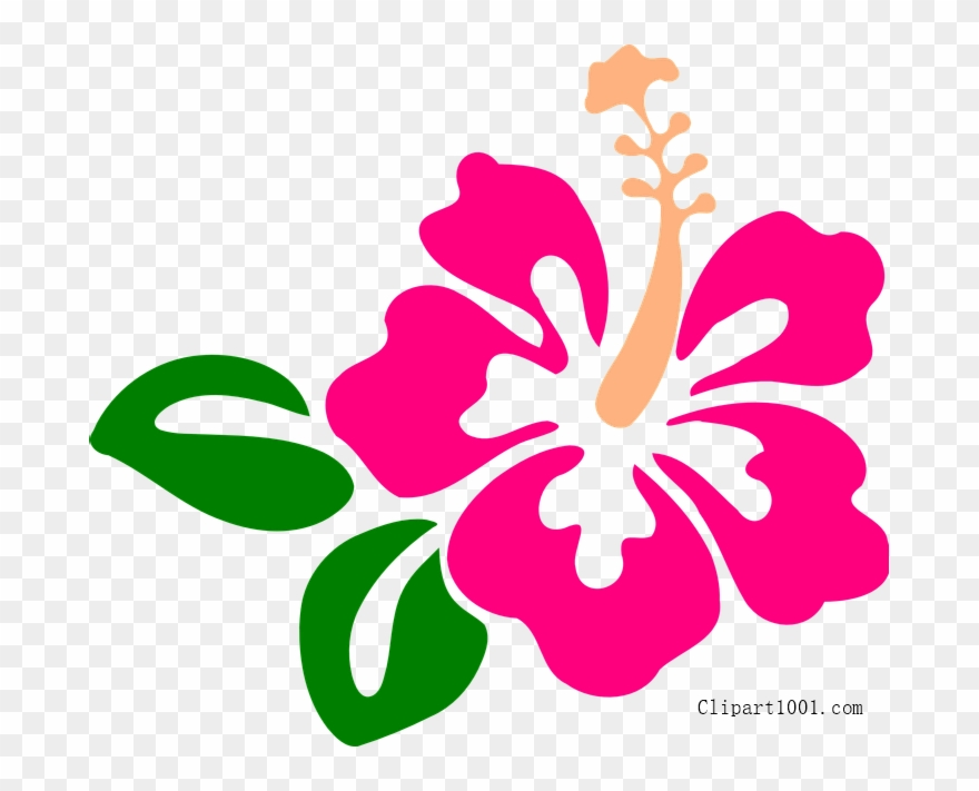 Download Hibiscus Clip Art Png Download 3446279 Pinclipart