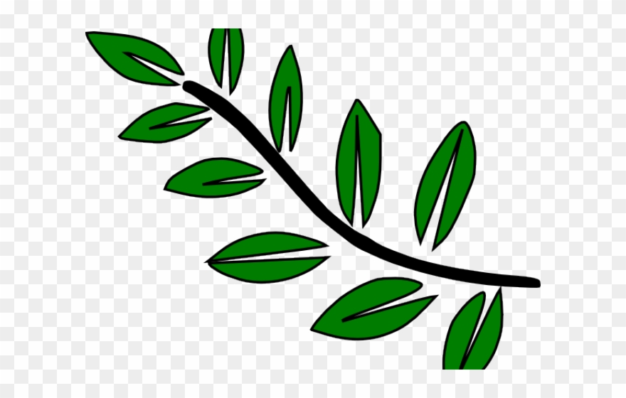 Leaves Clipart Cartoon Leaf Branch Clip Art Png Download 3457131 Pinclipart