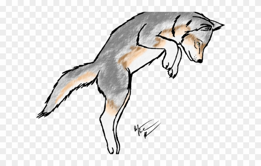 Wolf scary. White clipart scared dog