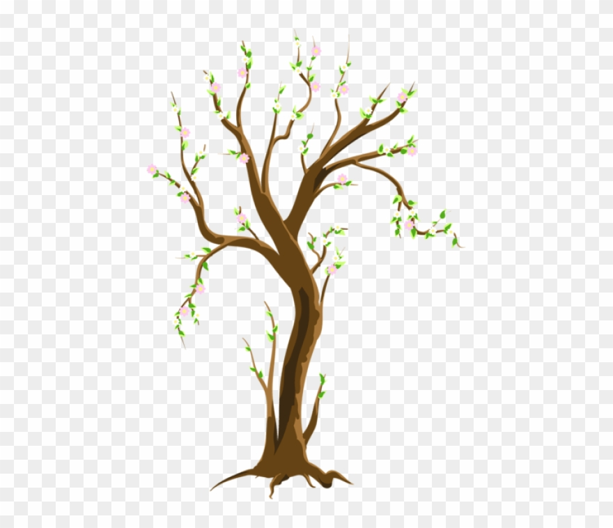Free Png Download Spring Treepicture Png Images Background Tree In