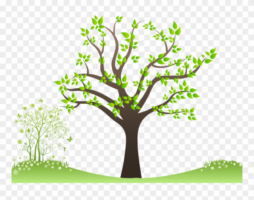 Welcome Family Tree Image For History Picture Frame - Tree Png For