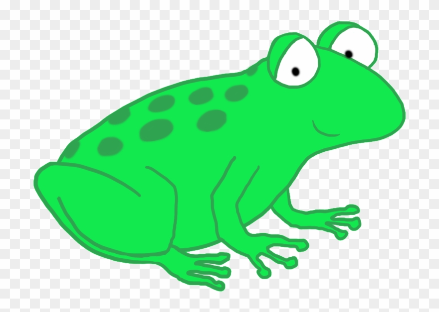 Frog clear background. Clip art toad cartoon
