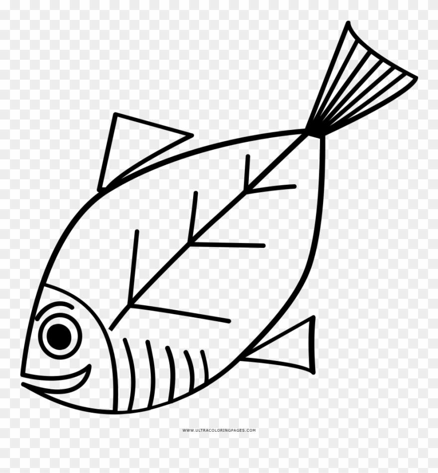 Pescado Página Para Colorear Line Art Clipart 3504405