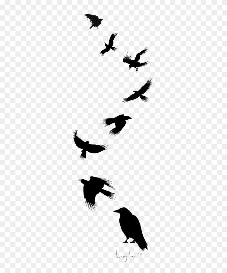 Tattoo Flight Crow Drawing Common Ink Bird Murder Of Crow Tattoos Clipart 3531213 Pinclipart